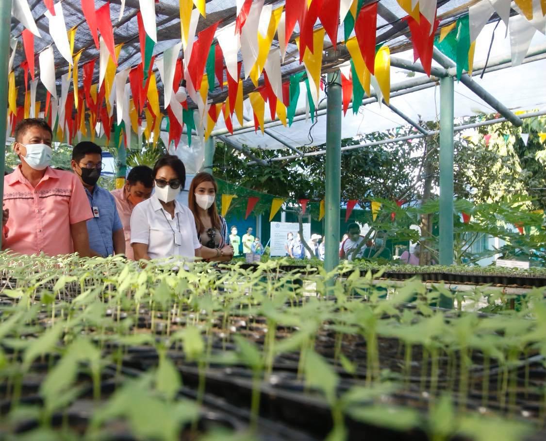 Capitol to reward schools with best vegetable garden